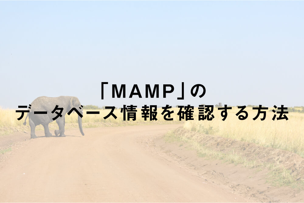 「MAMP」のデータベース情報を確認する方法
