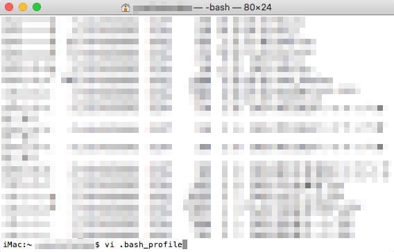 「vi .bash_profile」とコマンドを打ち込む