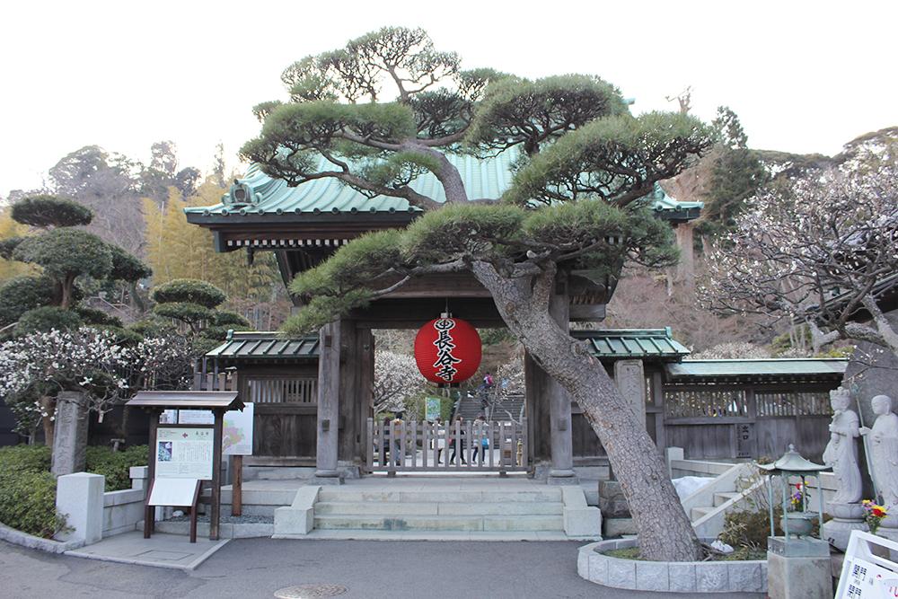 見どころ満載の長谷寺