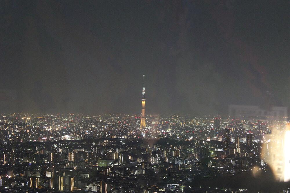 東京スカイツリーも綺麗に見えます。