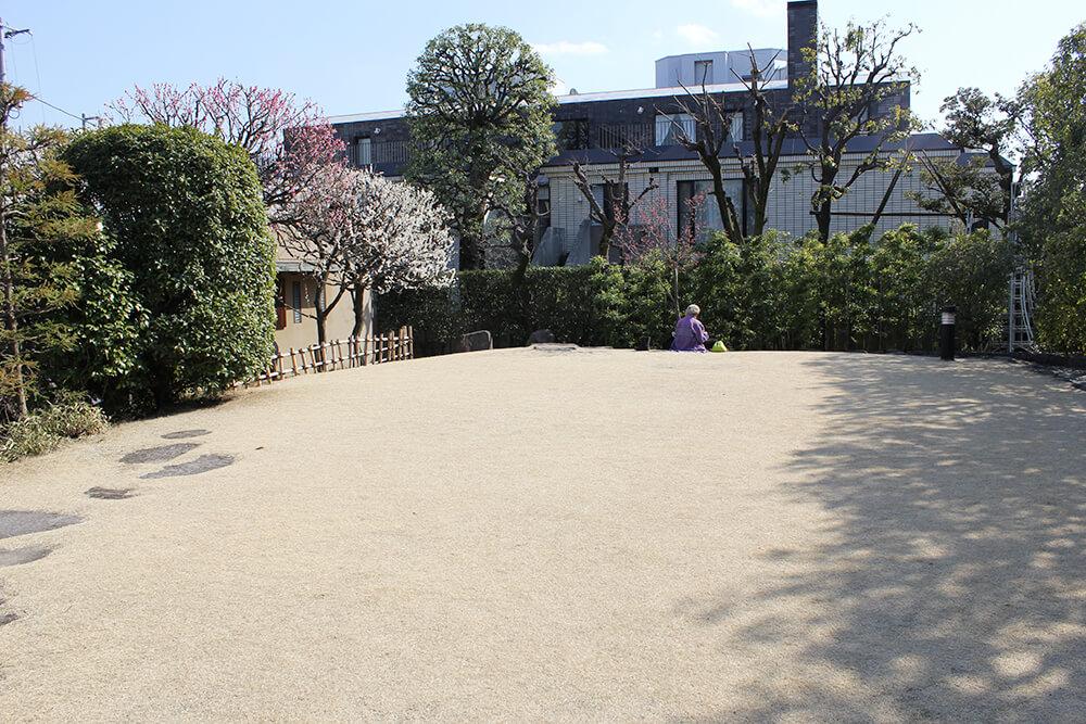 オススメの芝生広場