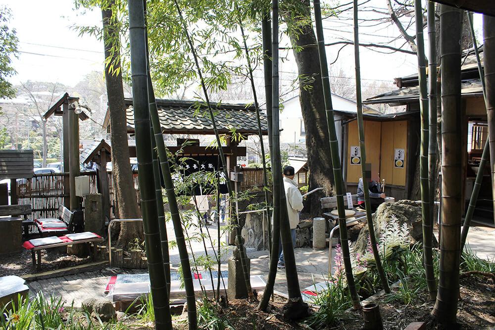 庭の竹林が風情あり